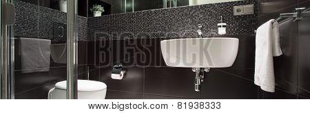 Black And White Luxurious Bathroom