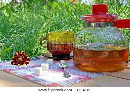 Beber chá