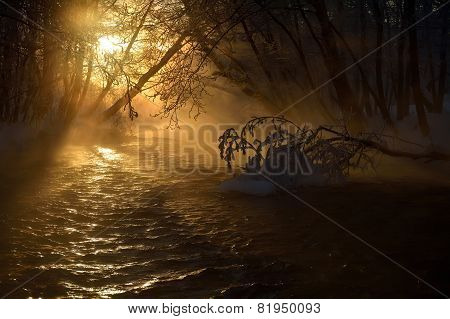 Mountain River In Winter Morning