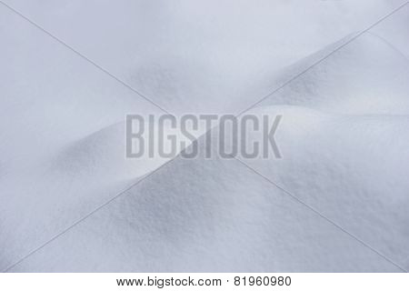 Heaps Of New Snow