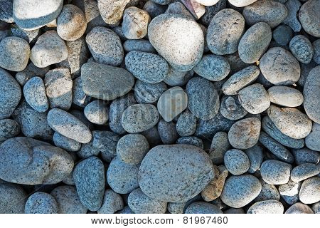 Rocks Backdrop