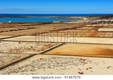 Salinas Del Janubio, Lanzarote Island, Canary Islands, Spain