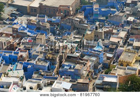 Famous Blue City In Jodhpur