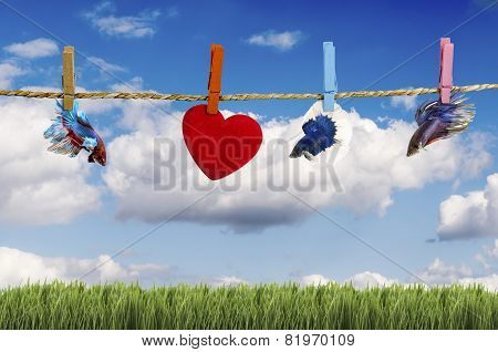 Green Field Under Blue Sky With Hearts Shape