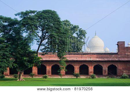The dome of the Taj Mahal