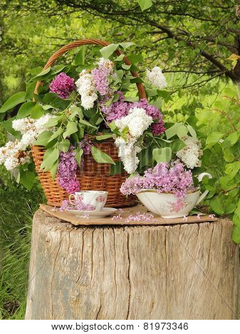 Cup Of Tea And Lilac In A Wattled Basket On A Wooden Stub