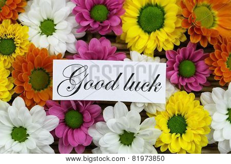 Good luck card with colorful santini flowers