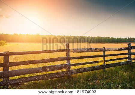 Rural Nature At Sunset