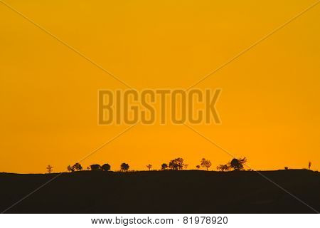 Trees Silhouetted On A Mountain, In Twilight Sky