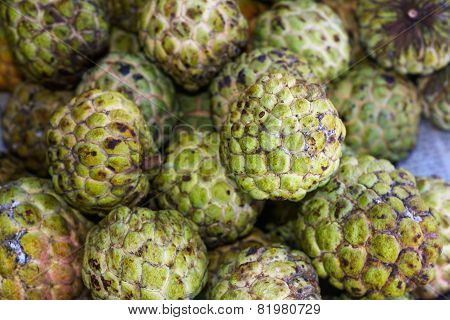 Sugar-apple tropical fruit