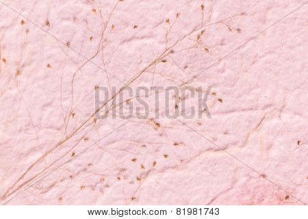 Mulberry paper with dry grass texture pink background