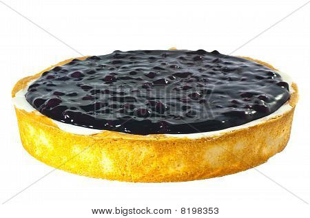 Whole Blue Berry Cheese Cake