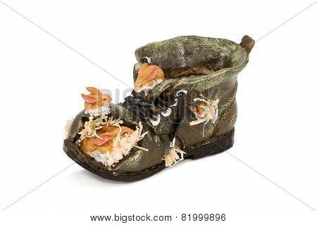 Empty Pot Shoes