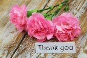 pic of carnation  - Thank you card with pink carnations on rustic wooden surface - JPG