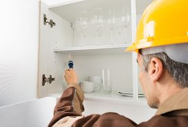 picture of pest control  - Pest Control Worker With Flashlight Checking Kitchen Shelf - JPG