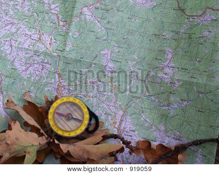 Compass And Ouk Foliage On A Map (7)