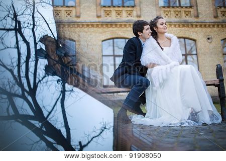 Wedding couple embracing sitting on a park bench