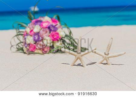 wedding rings on star fish, beach wedding concept, outdoor wedding in tropics