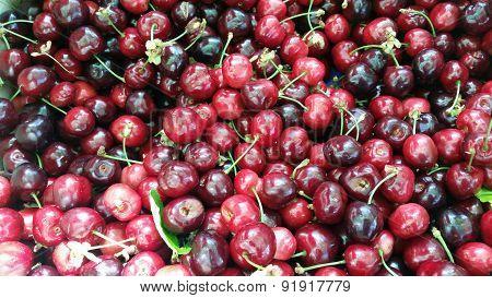 Fresh Sweet Cherries At The Market