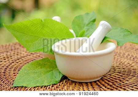 Porcelain herbal medicine grinder.