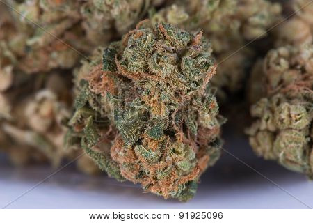 Medicinal Marijuana Mother's Helper Hybrid