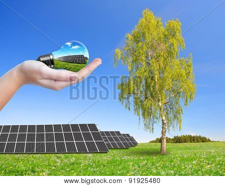 Solar energy panels on meadow and hand holding lightbulb. Green energy concept.