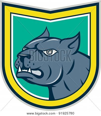 Pitbull Dog Mongrel Head Side Shield Cartoon