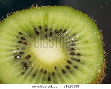 Macro Of Kiwi