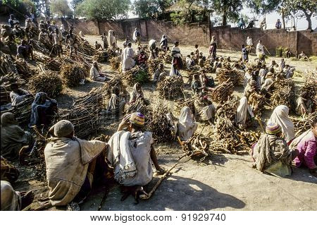 People Sell Fire Wood In Early Morning In Lalibel