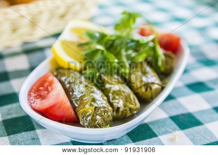 Fresh dolma with meat and vegetables on a checkered tablecloth