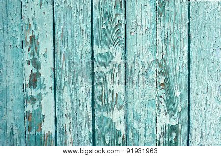 Teal Colored Peeled Board