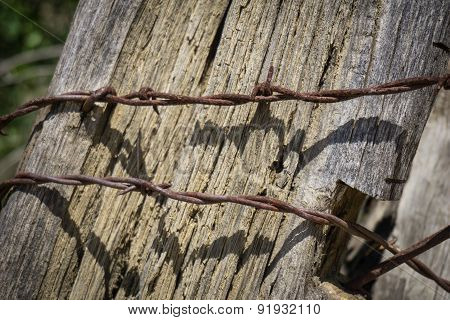 Rusting Strands Of Fence