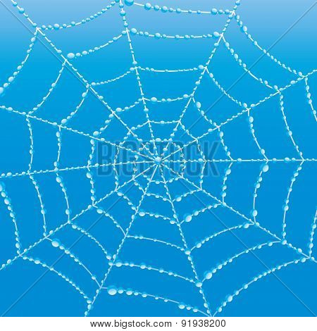Vector background. Cobweb.