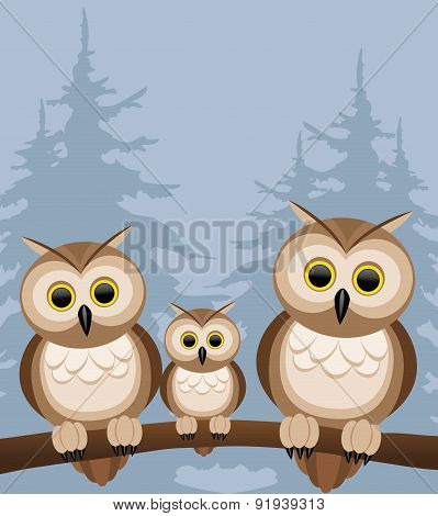 Vector illustration. Owls.