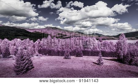 Infrared Forest And Mountains