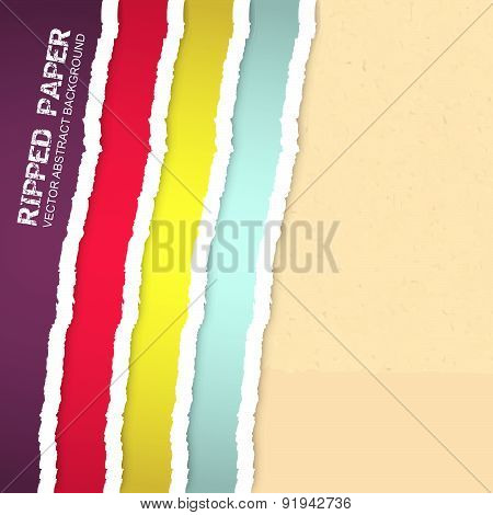 Ripped paper vector background