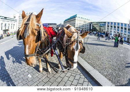 Carriage In Front Of Brandenburg Gate