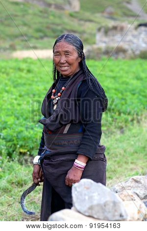 Tibetan woman working in fields