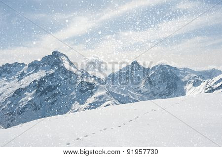 Winter landscape with snowflakes
