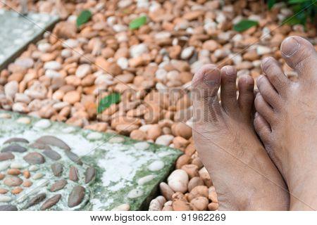 Gardener's Feet