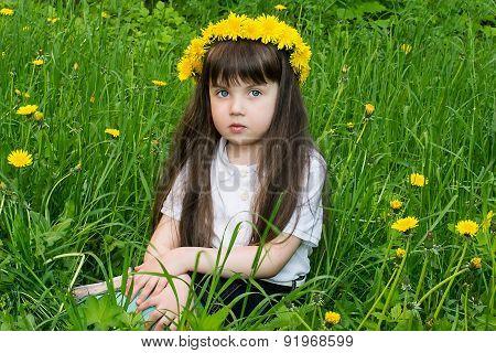 Attentive Little Girl In A Wreath From Dandelions