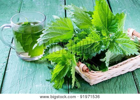 Medicinal Plant Nettles: Fresh Leaves And Infusion