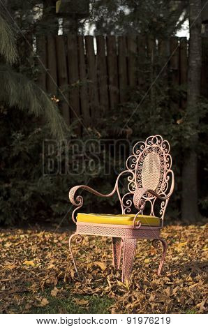 Pink  Chairl In An Autumnal Garden