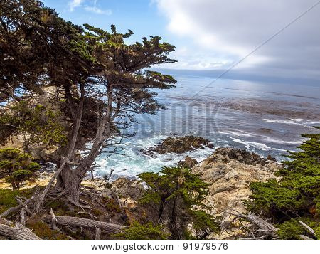 View Of Rocky Cliffs Above The Pacific Ocean At Point Lobos State Natural Reserve, In Carmel