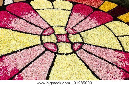 Infiorata baroque feast images made of flower petals, Noto, Sicily