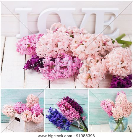 Collage With Fresh  Blush Pink Hyacinths