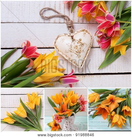 Collage With Fresh Yellow And Pink Tulips And Heart