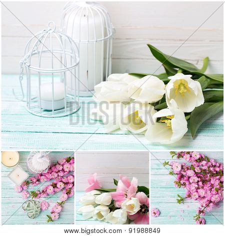 Collage  With White And Pink  Flowers