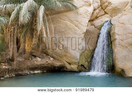 Waterfall In Mountain Oasis Chebika In Tunisia