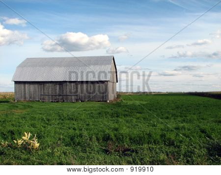 Old Wooden Barn In The Green Field